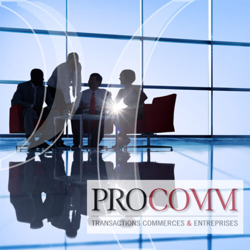 PROCOMM_immobilier_commercial